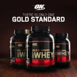 10 Best Whey Protein Powders in India